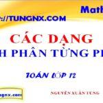 Các dạng tích phân từng phần - các phương pháp tính tích phân - học toán 12 online - Tungnx