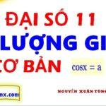 Phương trình lượng giác cơ bản - phương trình cosx lớp 11 - Maths9m- Phương trình cosx = m